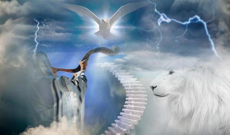 482958 443122539071236 1182827380 n lion trumpet christ dove