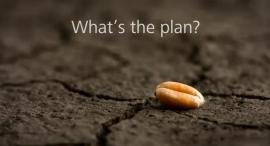 Whats-the-plan growth seed dry