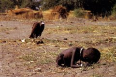 kevin-carter-vulture desperation death revelation plague famine