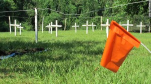 121003020812-florida-reform-school-graves-wideshot-with-flag-horizontal