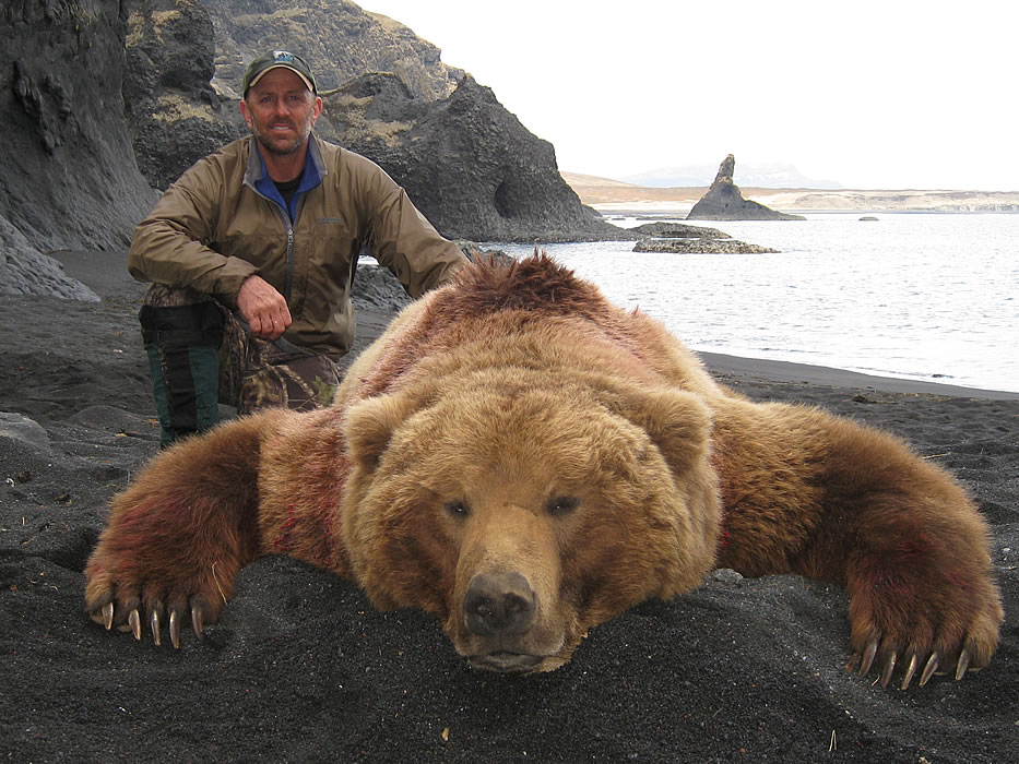 russian bear hunting dog