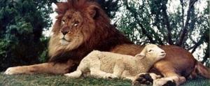 christ returnsLion and Lamb header blessed hope rapture revelation